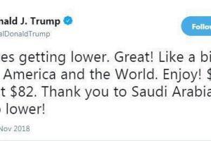 تشکر نفتی ترامپ از عربستان: باید پایین تر هم برود!