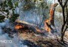 سرعت عمل در اطفاء حریق جنگلها و مراتع مهم است