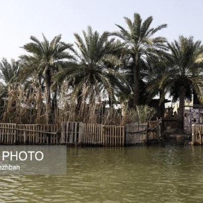 تالابهای خوزستان، از خشکسالی تا آبگیری