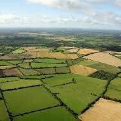 ایجاد ۲۰۰ هزار شغل با آبی کردن یکصد هزار هکتار از اراضی کشاورزی