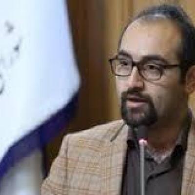 ورود شورای شهر تهران به موضوع آتش سوزی در بوستان ولایت و چیتگر
