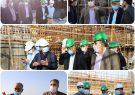بازدید مدیر کل دیوان محاسبات استان بوشهر از پروژه های آبرسانی در بوشهر وتنگستان