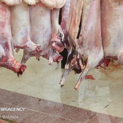 طرح «تبرکات علوی» در بوشهر اجرا شد/ توزیع یک تن گوشت قربانی