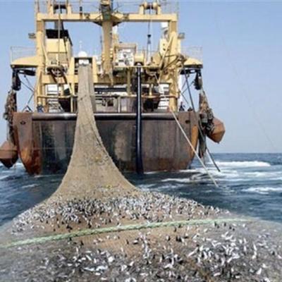 """""""ممنوعیت صید ترال فانوسماهیان"""" از ابتدای آذر اجرا شده است/ تصمیم جدید مجلس برای حمایت از آیش دریا"""